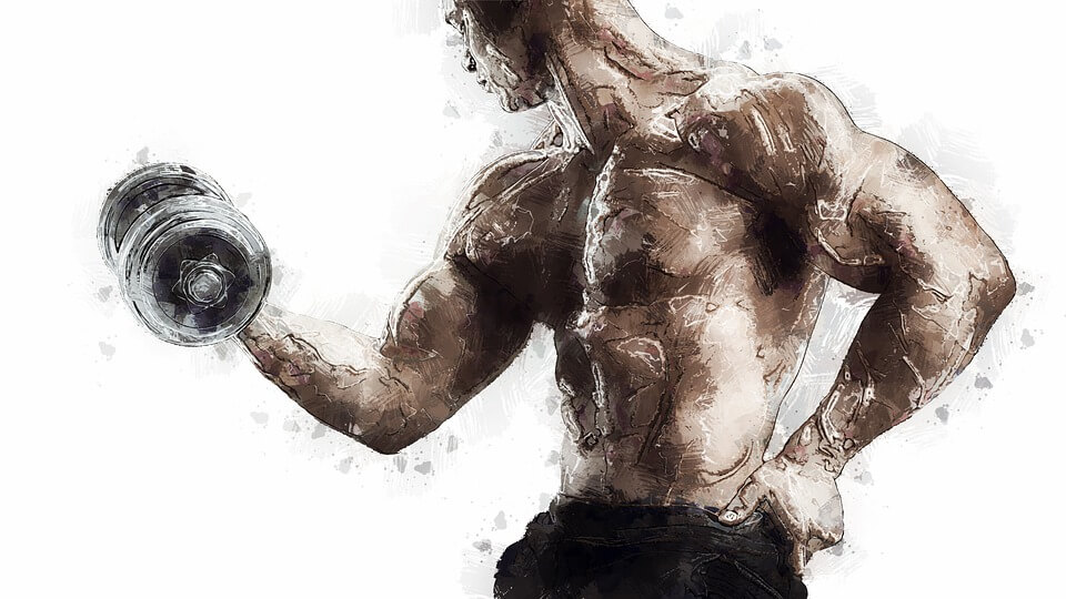 entrainer_muscles